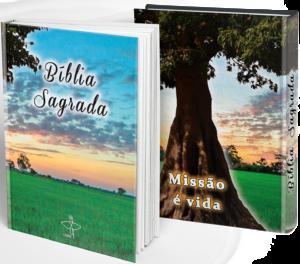 mockup-capa-da-biblia2-1-300x264