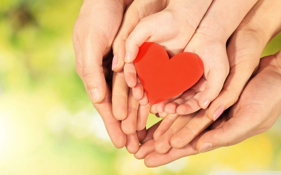 family_love_hands-wallpaper-960x600